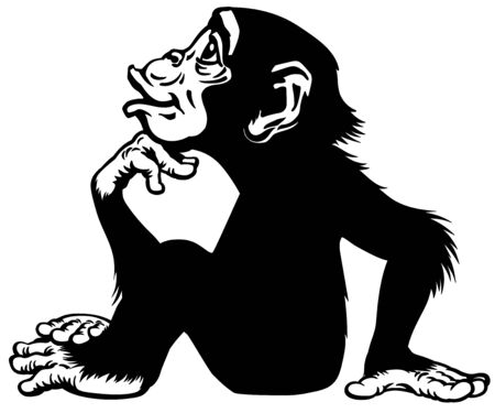 Cartoon Chimpanzee in thinker profile. Great ape or chimp monkey in sitting pose and looking up. His one hand on chin. Romantic emotion. Black and white side view vector illustration Stock Illustratie