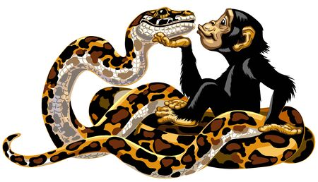 Cartoon chimpanzee and python snake friendship. Great ape or chimp monkey holding a head of charming big boa and sending air kiss. Cheerful and attractive emotion. Isolated side view vector illustration
