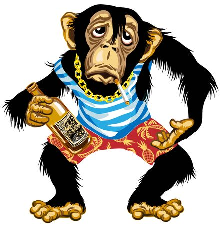 cartoon drunk chimpanzee great ape with golden chain on the neck and holding empty bottle of alcohol, wearing sailor shirts and shorts. Chimp monkey alcoholic smoking a cigarette in vacation. Isolated vector illustration