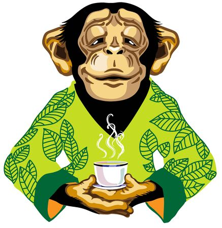 cartoon chimpanzee great ape or chimp monkey wearing kimono robe with green tea leaves and holding a cup of tea. Spiritual harmony and peaceful emotion. Front view. Isolated vector illustration