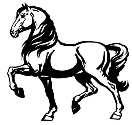 Heavy draft horse side view. Black and white vector Illustration