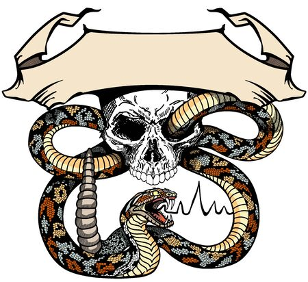 a snake coiled around the human skull. Angry dangerous rattlesnake. banner, emblem with ribbon scroll. Tattoo or shirts design style vector illustration