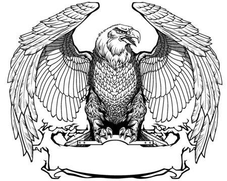 Águila con alas abiertas sentado en la cinta en blanco. Vista frontal. Ilustración de vector aislado blanco y negro