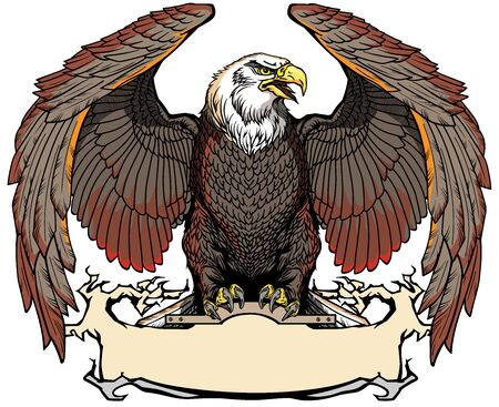 Eagle with opened its wings sitting on the blank ribbon. Front view. Isolated vector illustration Ilustrace