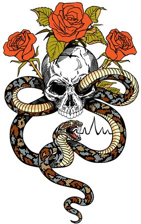 snake coiled around the human skull and roses. Angry dangerous serpent and flowers . Tattoo style isolated vector illustration. Front view