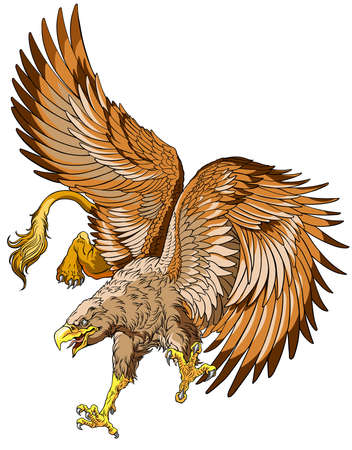 Flying Griffin, griffon, or gryphon. A mythical beast having the body of a lion and the wings and head of an eagle. Vector illustration