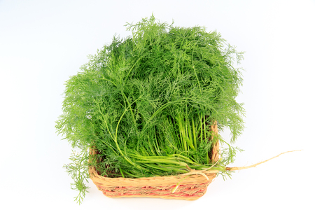 fennel in a basket