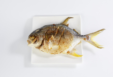 Yellow pomfret isolated on white background Stock Photo