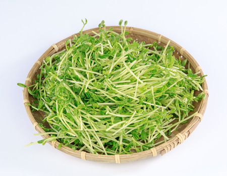 Bean sprouts in a bamboo basket