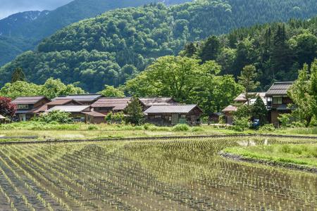 gokayama: Historical village of Shirakawa-go. Shirakawa-go is one of Japans UNESCO World Heritage Sites located in Gifu Prefecture, Japan