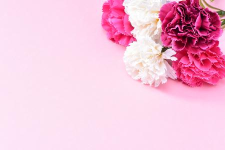 5月母の日カーネーション束の花ブーケトップビュー、テキストのためのブランク、ピンク