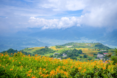 The Orange daylily(Tawny daylily) flower farm at Sixty Rock Mountain(Liushidan