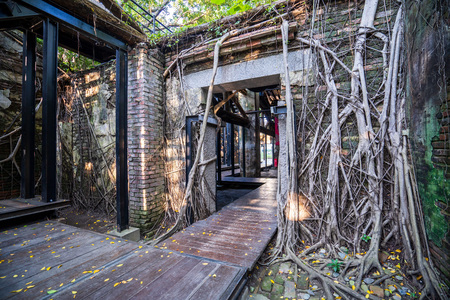 The Anping Tree House is a former warehouse in Anping District, Tainan, Taiwan. The Stock Photo