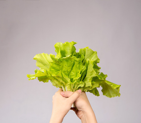 A Woman is holding lovely and healthy vegetables(Chinese cabbage, Bok-choy) in hands, concept of direct delivered from farm.