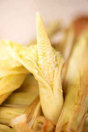 Delicious homemade izakaya-like roast baby corn in wooden background, Taiwan delicacies, top view, copy space