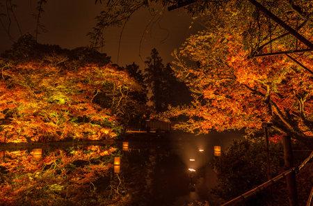 Beautiful Japanese garden named Mifuneyama Rakuen in autumn night view with maple leaves and lake reflection. 新聞圖片