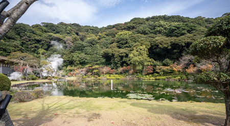 Tropical water lily in UMI JIGOKU (Sea Hell) pond in autumn, which is one of the famous natural hot springs viewpoint, the japanese is picture means Stock Photo