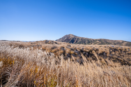 Aso mountain and dry brown grassland with miscanthusm in autumn, blue sky. Stok Fotoğraf - 113766678