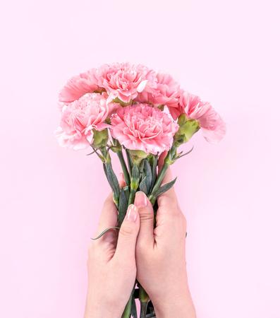 Kobieta daje bukiet elegancji kwitnący baby różowy kolor przetargu goździków na białym tle na jasnym różowym tle, koncepcja projektowania wystroju dzień matki, widok z góry, zbliżenie, miejsce Zdjęcie Seryjne