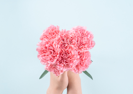 Woman giving bunch of elegance blooming baby pink color tender carnations isolated on pale blue background, mothers day decor design concept, top view, close up, copy space