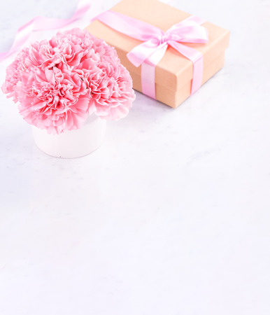 Copy space, close up, mock up, clipping path. Mothers day wording concept design. Beautiful fresh blooming baby pink color carnations isolated on bright marble background.