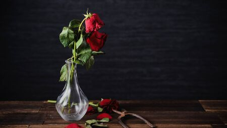 Withered rose petals and leaves on dark gray background and wooden board, sad valentines day concept, break up, copy space