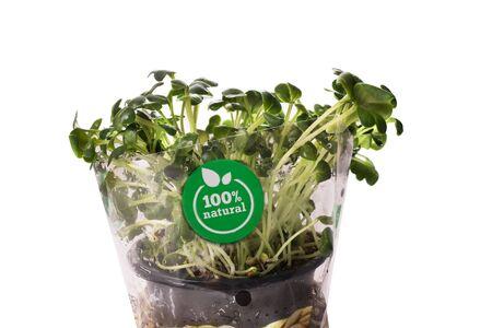 Garden small radish with 100 percents organic label