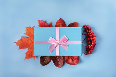 Blue gift box with atlas pink ribbon on blue background with autumn leaves