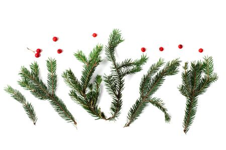 Christmas tree branches with red berries isolated on white background Stok Fotoğraf
