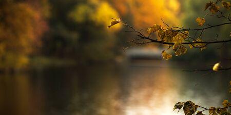 Blurred park lake background, watercolor effect autumn banner Stok Fotoğraf