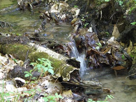 Fresh water spring flows from a high ridge. Water pours over obstacles moving toward the bottom. Stock Photo - 4886206