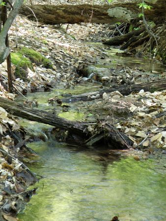 Fresh water spring flows from a high ridge. Water pours over obstacles moving toward the bottom. Stock Photo - 4886191