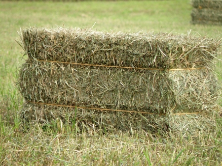 Hay bale sets on an open field.