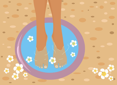 Feet in spa bowl Vector