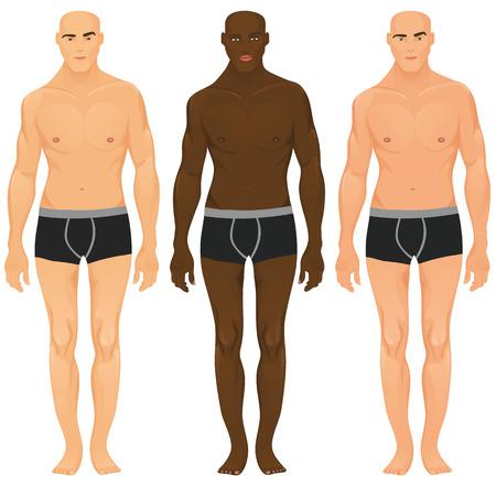 Modelos masculinos Ilustración de vector