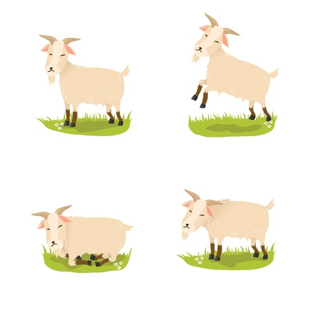 Set of cute vector goats Vector