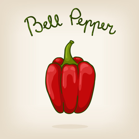 Vector illustration of cute shiny hand drawn red bell pepper