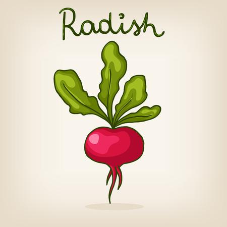 cute hand drawn shiny radish