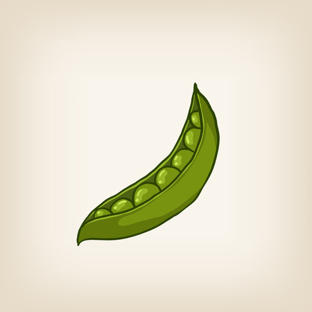 sweet pea: cute shiny hand drawn sweet pea