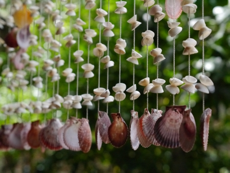 Beautiful handmade shell hanger
