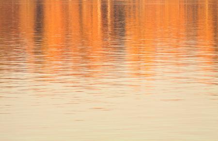 pond: autumn reflections