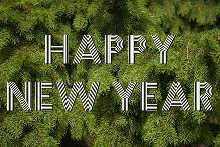 pine needles: Happy new year congratulation on pine needles background Stock Photo