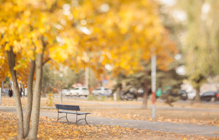 Old bench in the autumn park. Natural optical tilt shift photo. Stock Photo