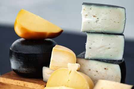 Organic homemade cheese at the cheese fair. Healthy food manufacture