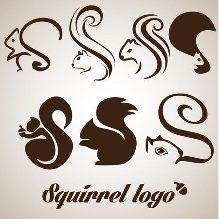 squirrel set