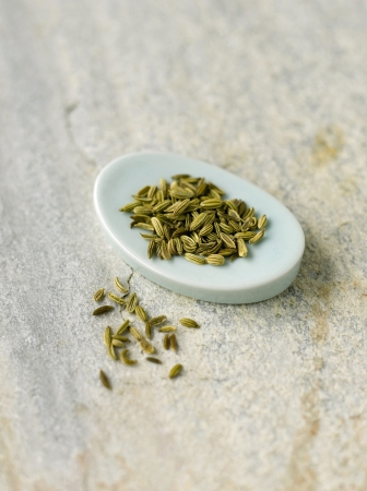 Fennel seeds photo