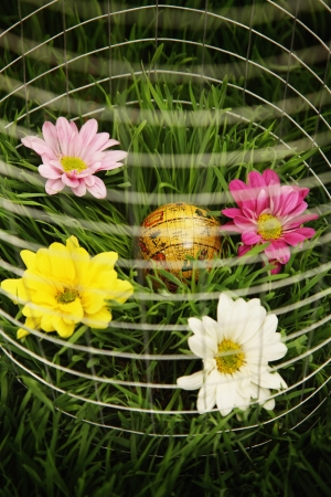 wire mesh: Globe and flowers surrounded by wire mesh on grass
