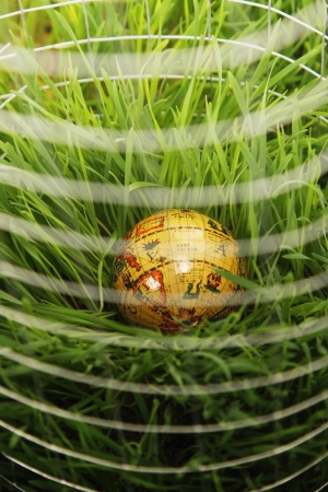 wire mesh: Globe surrounded by wire mesh on grass