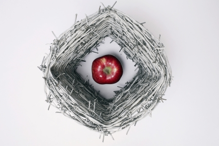 An apple surrounded by barbed ire