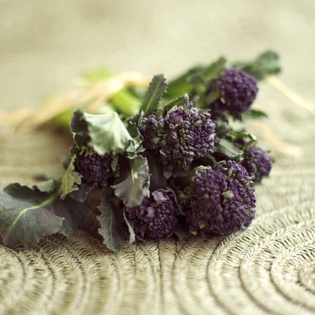 Purple long stem broccoli